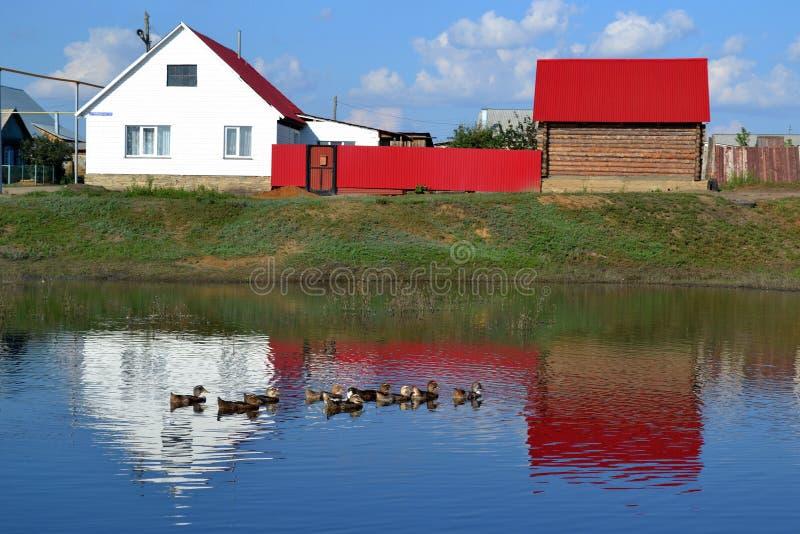 Huis op de bank van een vijver stock afbeeldingen