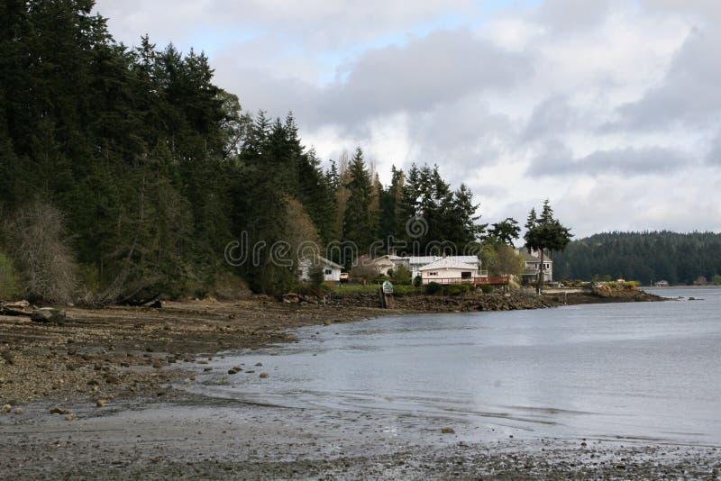 Huis op het meer naast een bos van pijnboombomen stock foto