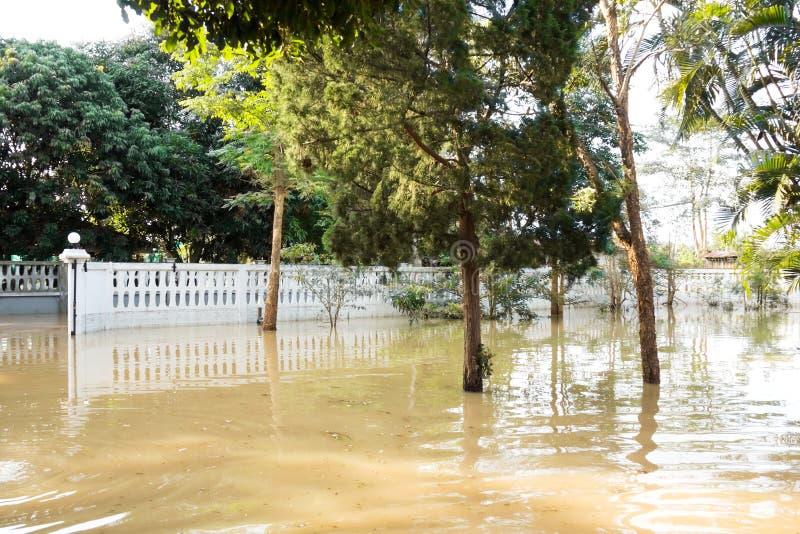 Huis overstroming Water over werf en boom stock afbeeldingen