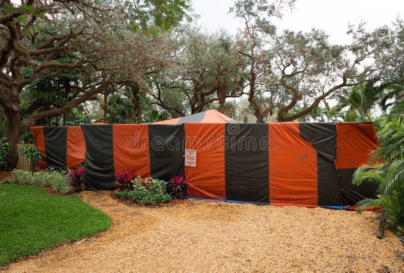 Huis tented voor termieten en klaar voor beroking royalty-vrije stock afbeelding