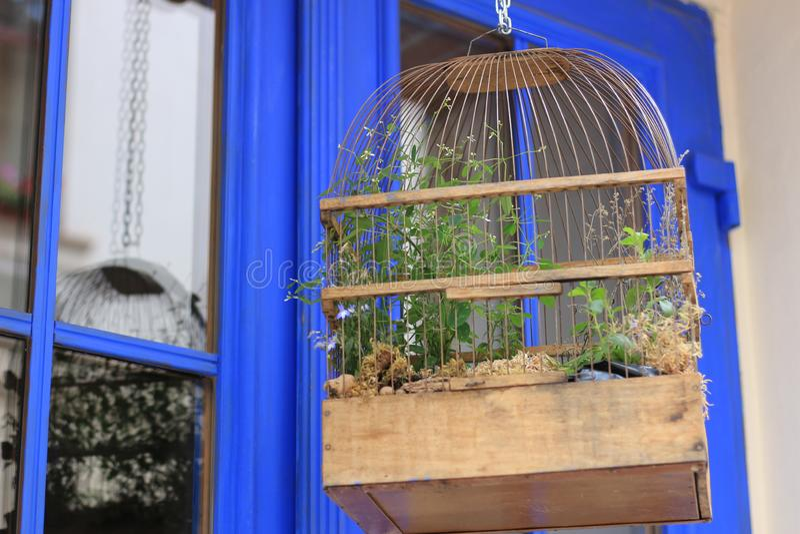 Huis voor een kleine vogel Papegaaikooi stock foto