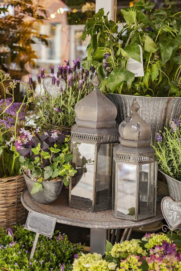 Huisdecor en installaties door bloemwinkel royalty-vrije stock afbeelding