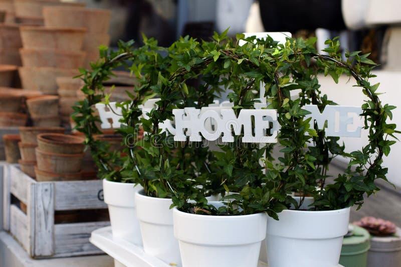 Huisdecoratie in witte potten royalty-vrije stock fotografie