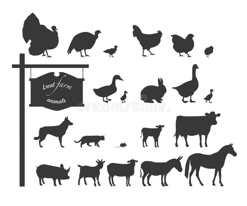 Huisdieren en vogels Zwarte silhouetten op witte achtergrond stock illustratie