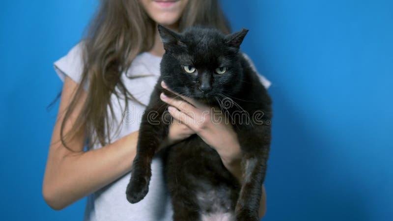 Huisdierenconcept teer meisje die een zwarte arrogante kat houden kattenlittekens van straatstrijden stock foto's