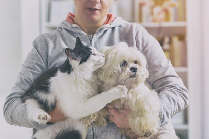 Huisdiereneigenaar met hond en kat royalty-vrije stock afbeelding