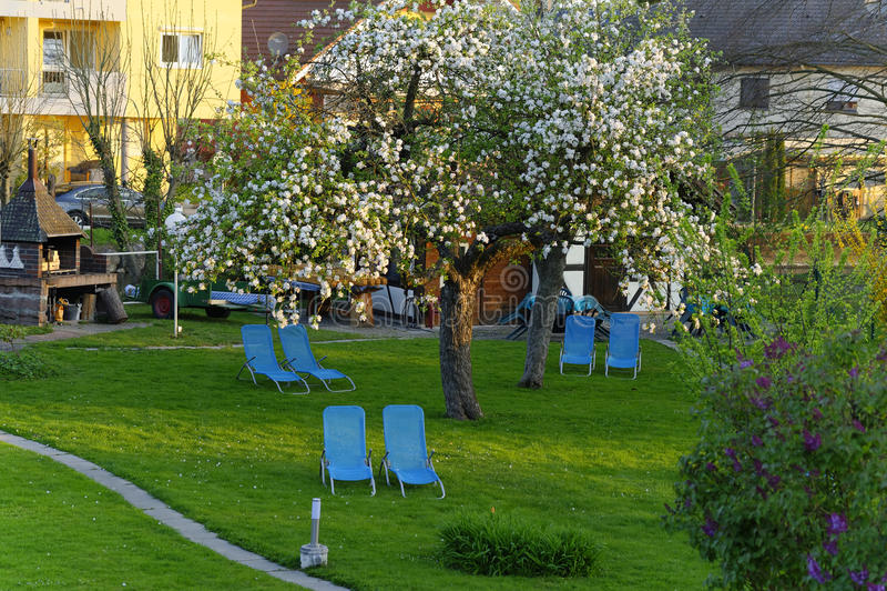 Huiselijke tuin in de lente stock afbeelding