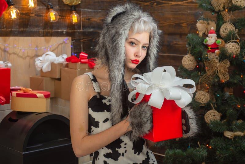 Huisvakantie Hulst heel swag Kerstmis en noel De gift van het nieuwjaar De jonge vrouw knipoogt Grappig meisje in het kostuum van stock afbeelding