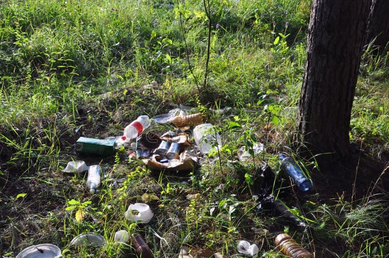 Huisvuil in bosmensen illegaal geworpen huisvuil in bos royalty-vrije stock afbeeldingen
