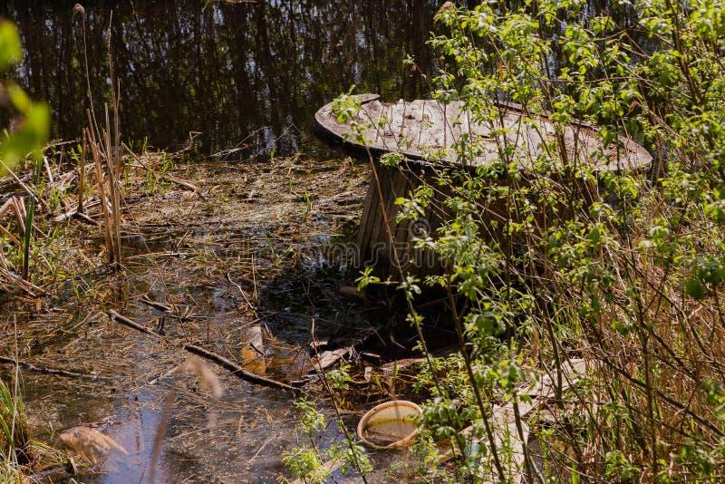 Huisvuil op een bosmeer op een zonnige dag stock fotografie