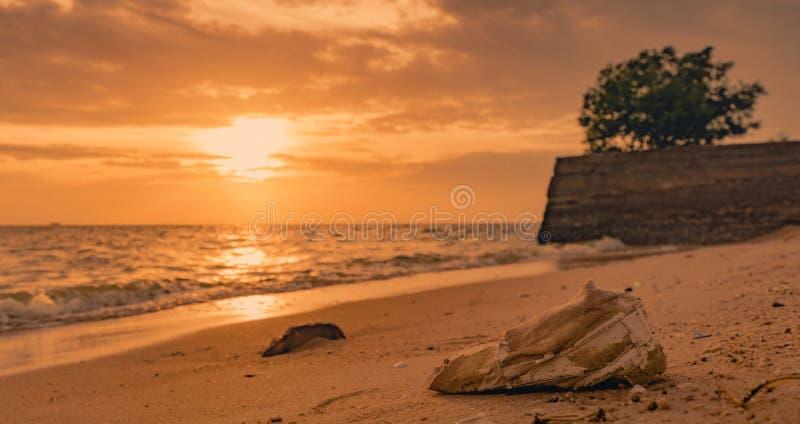 Huisvuil op het Strand Kustmilieuvervuiling Mariene milieuproblemen Oude schoenen op zandstrand in zonsondergangtijd stock afbeeldingen