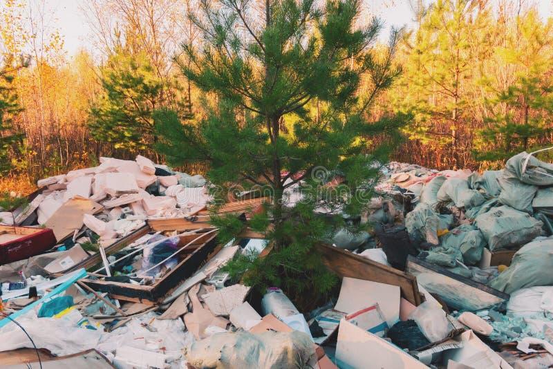 Huisvuilstortplaats in de bos, slechte ecologie stock afbeeldingen