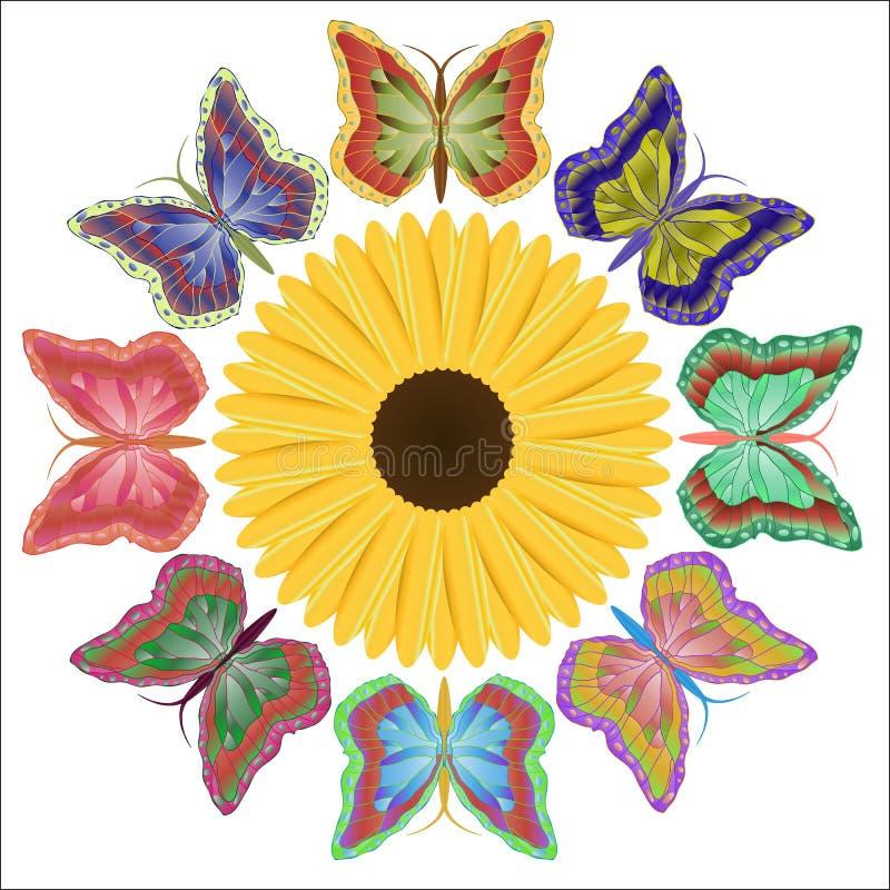 Huit beaux papillons bariolés et une fleur lumineuse illustration de vecteur