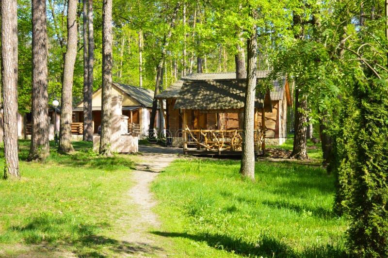 Huizen in de bos de zomerrest stock foto's