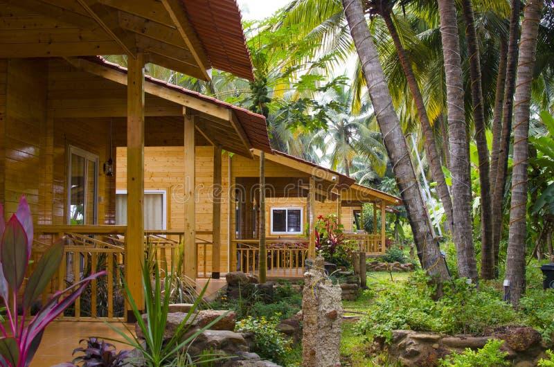 Huizen in een palmbosje royalty-vrije stock foto