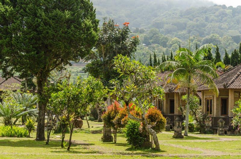 huizen en bomen in Indonesië stock foto's