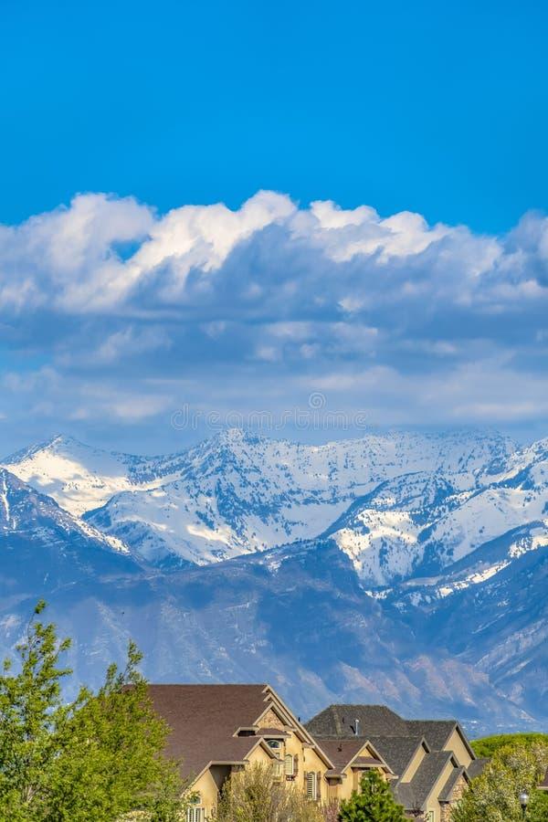 Huizen en weelderige groene bomen met sneeuw afgedekte berg op de achtergrond stock fotografie