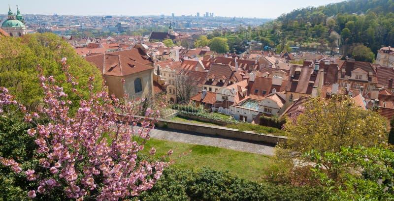 Huizen met betegelde daken in Praag, Tsjechische Republiek royalty-vrije stock foto