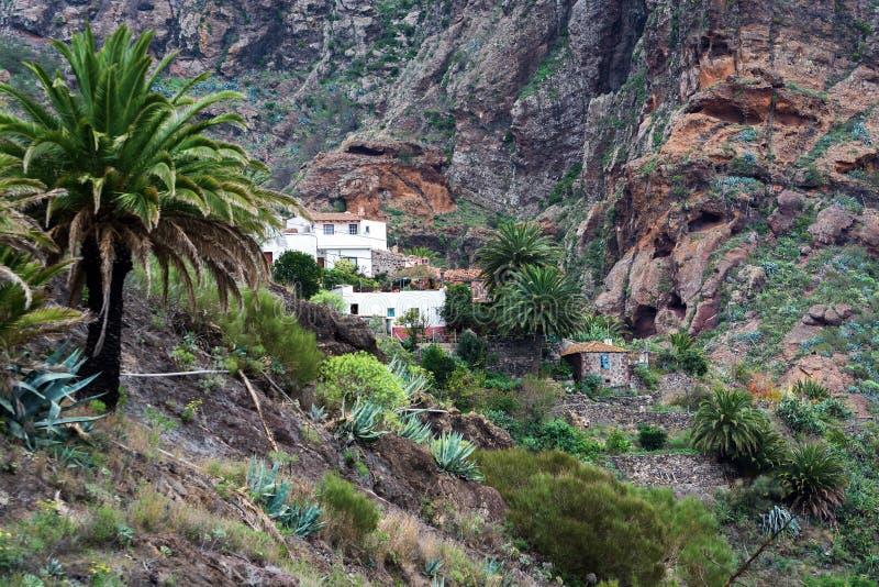 Huizen onder bergen bij Masca-dorp op het eiland van Tenerife, Spanje stock afbeeldingen