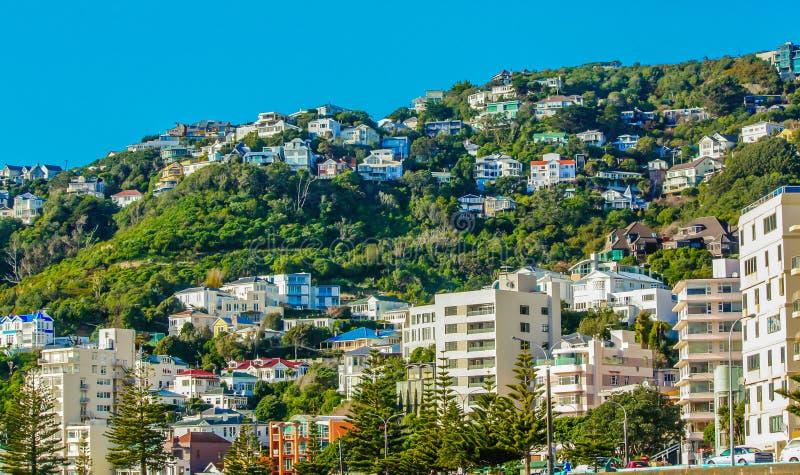 Huizen op een heuvel zijwellington, stad, Wellington, Nieuw Zeeland royalty-vrije stock foto
