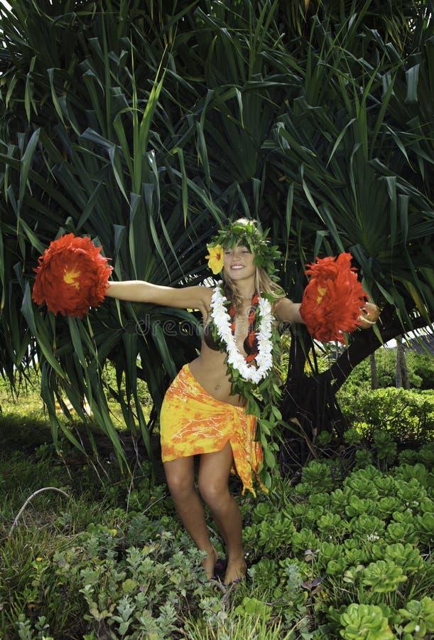 Hula havaiano foto de stock