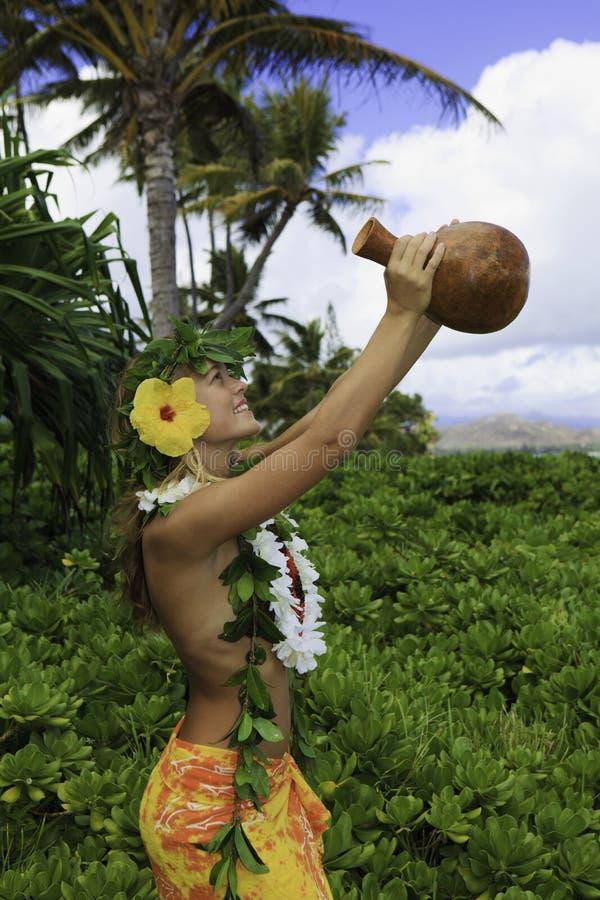 Hula havaiano imagem de stock royalty free