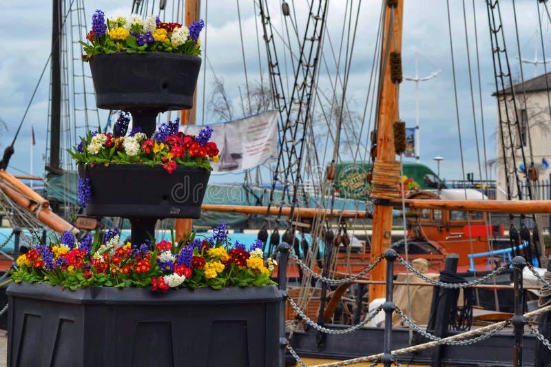 Hull marina, Kingston royalty free stock photography