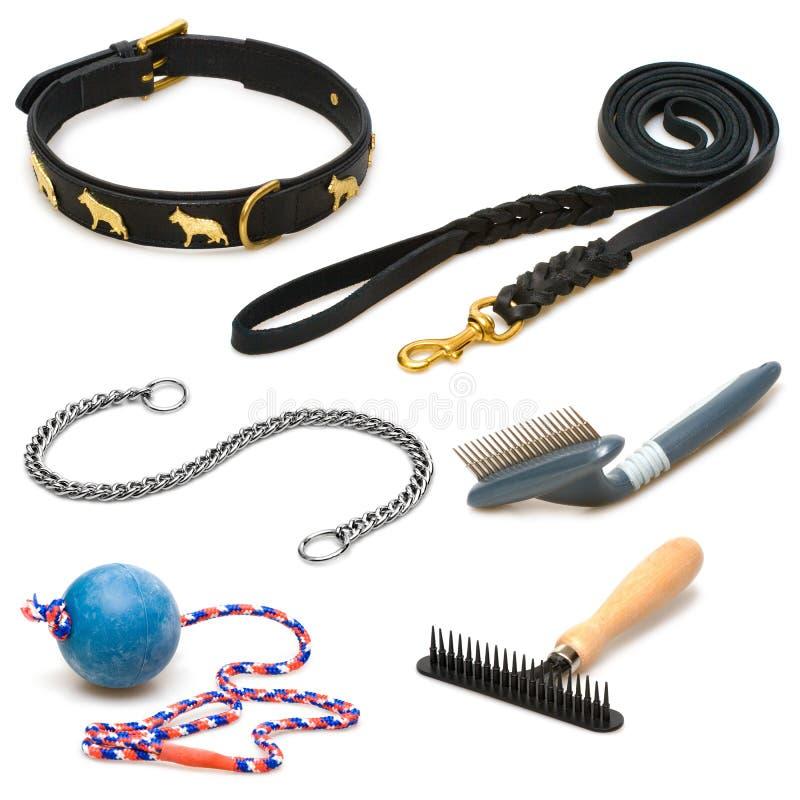 Hulpmiddelen en speelgoed voor huisdieren stock foto's