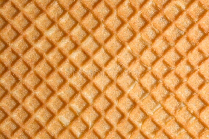 Hulptextuur van de oppervlakte van een koekje of een favi, abstracte rug stock afbeelding