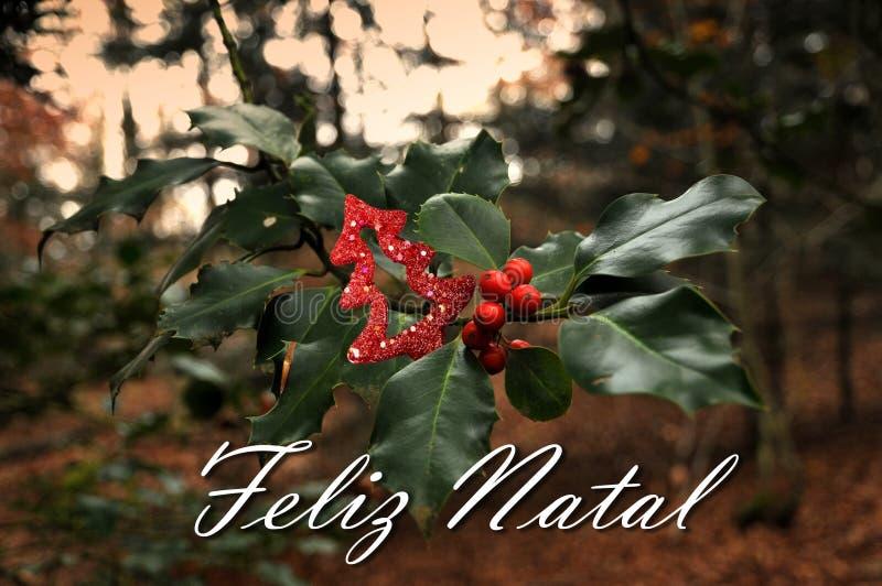Hulst rode bessen in het bos met tekst Feliz Natal stock afbeelding