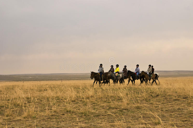 The hulunbuir prairie royalty free stock photography