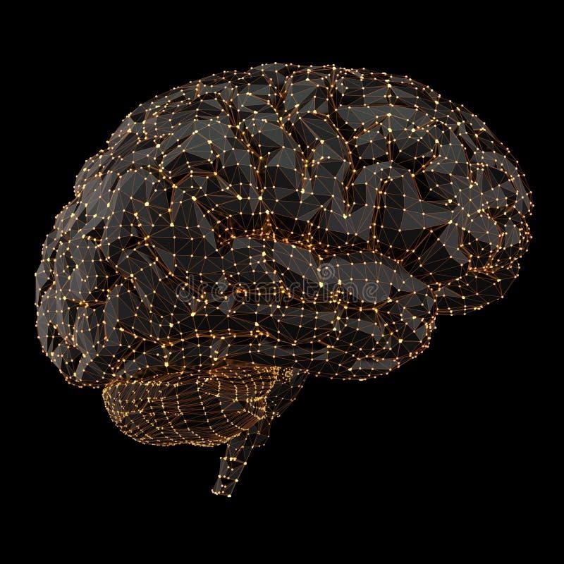 Humain Brain Power Connections photos libres de droits
