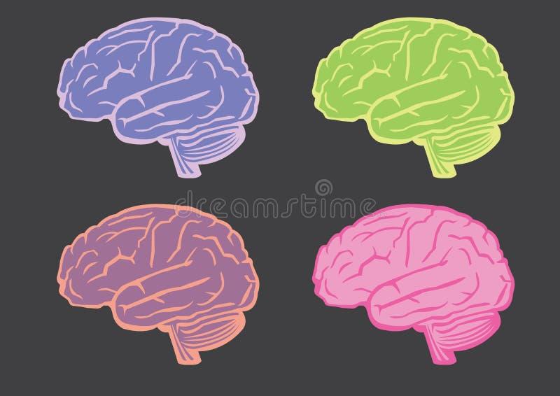 Humain Brain Vector Illustration Set illustration stock