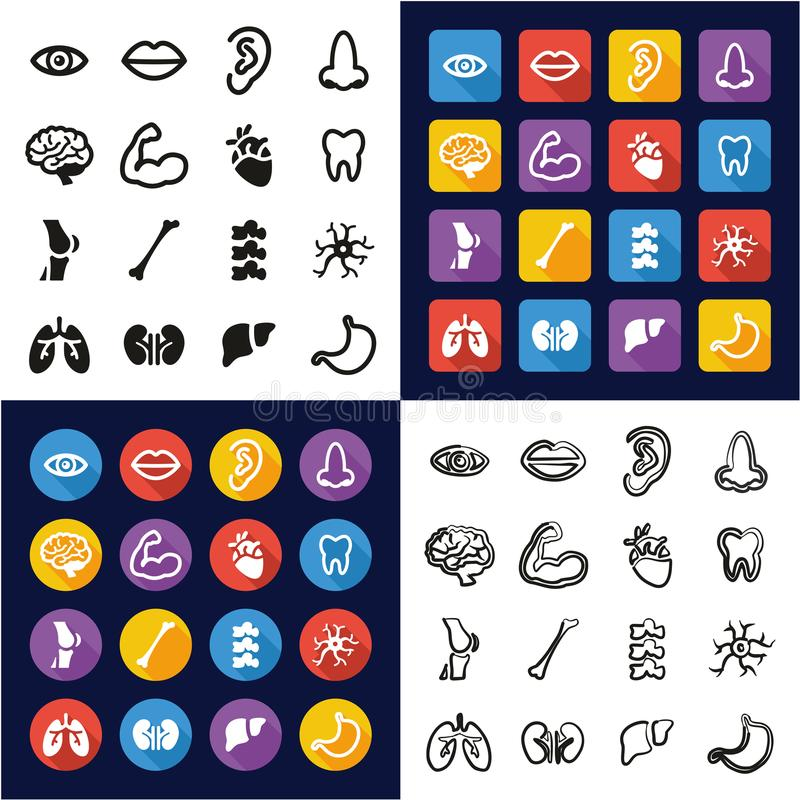 Human Anatomy All in One Icons Black & White Color Flat Design Freehand Set vector illustration