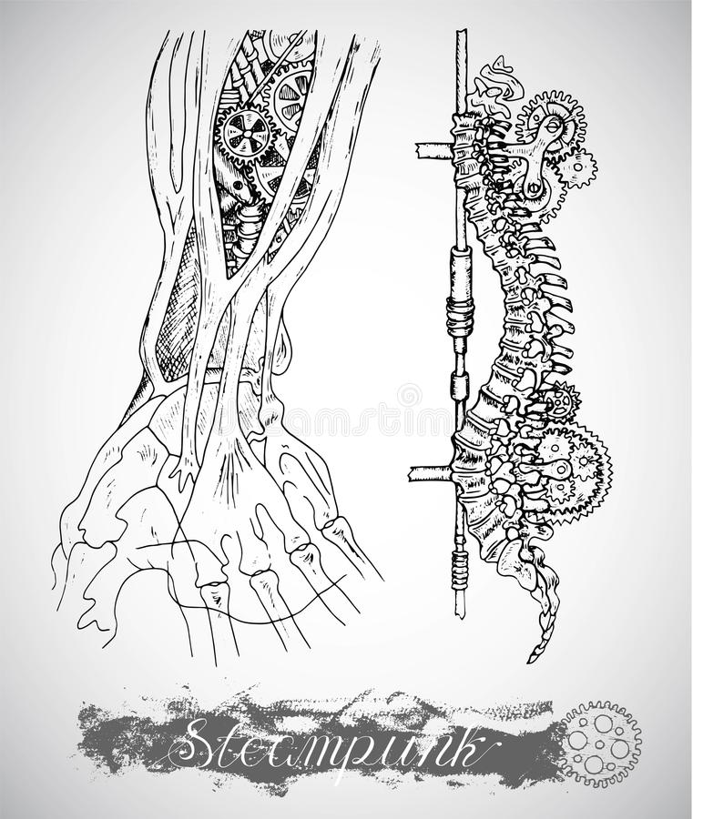 Human anatomy hand and backbone with vintage mechanism in steam punk style. Arm bones and retro machines. Hand drawn illustration, sketch tattoo, old black and stock illustration