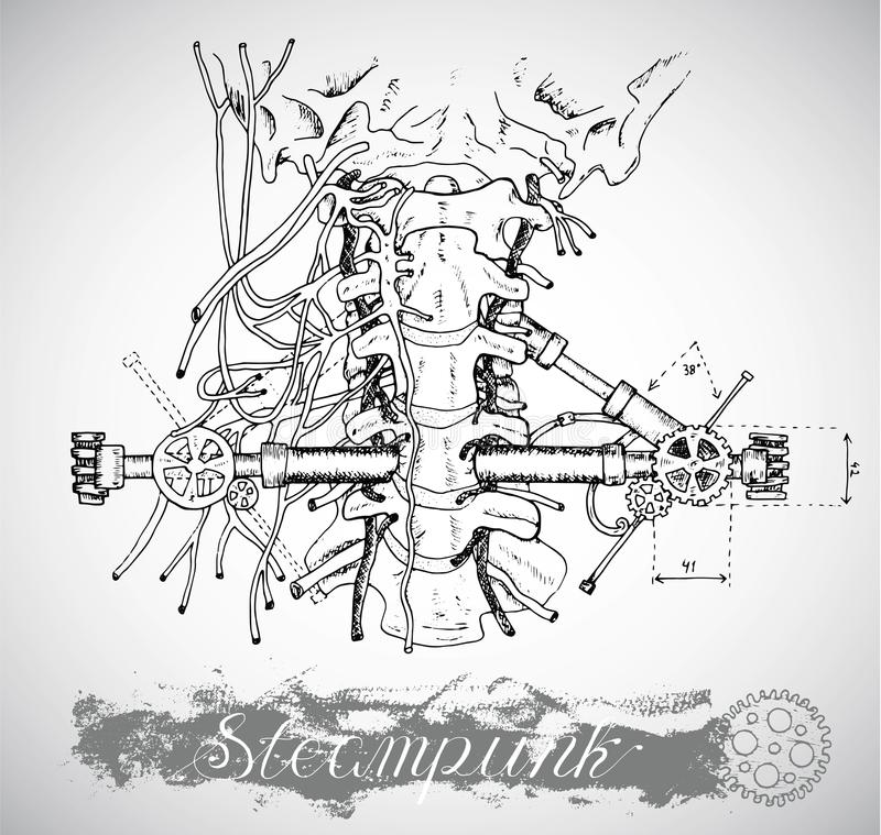 Human anatomy throat with vintage mechanism in steampunk style. Human anatomy throat with vintage mechanism in steam punk style. Hand drawn illustration, sketch royalty free illustration