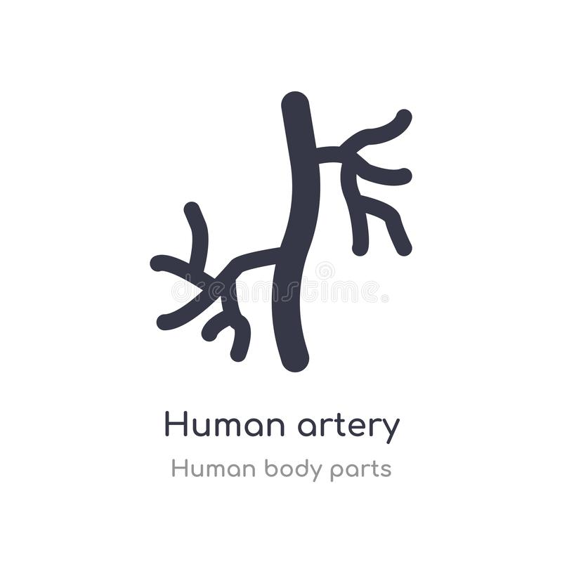 human artery outline icon. isolated line vector illustration from human body parts collection. editable thin stroke human artery stock illustration
