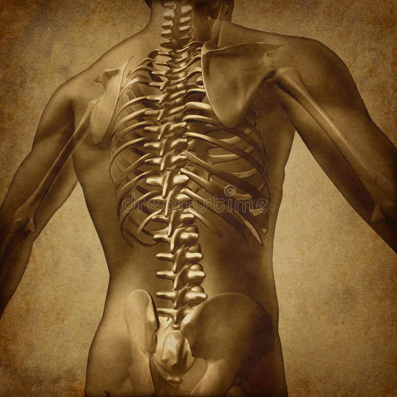 Human Back Grunge Texture stock illustration