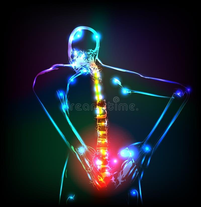 Human backbone. In x-ray, back Pain royalty free illustration