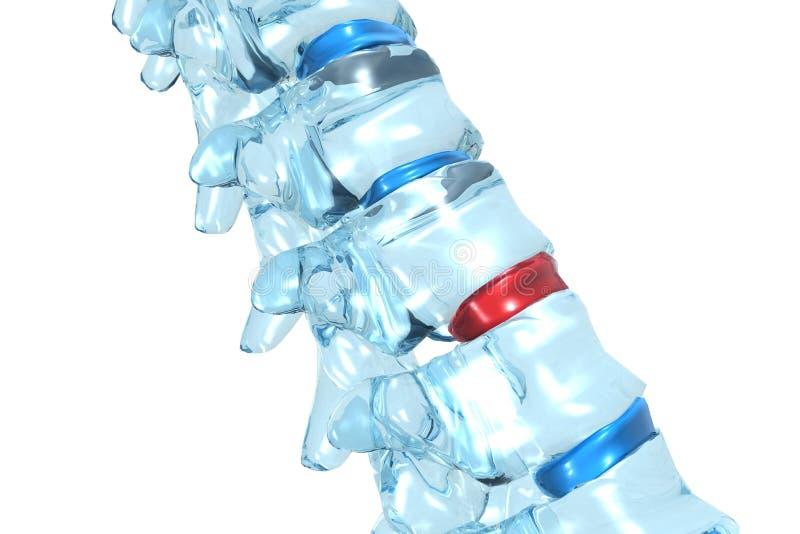 Human backbone. 3d illustration of a human backbone. Side view stock illustration