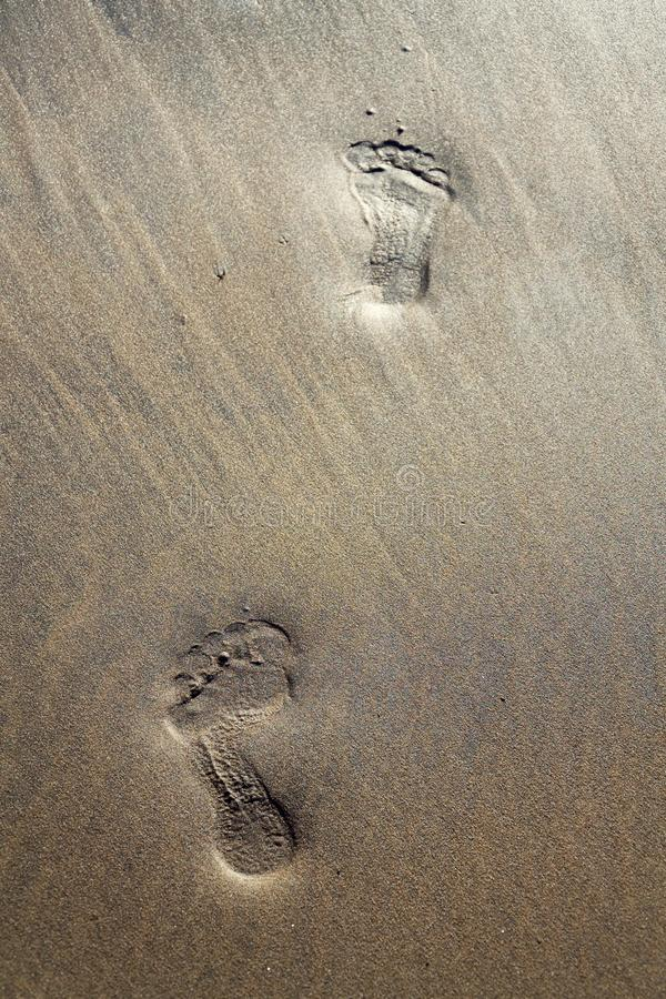 Human barefoot footprints dissapearing in brown yellow sand beach background, summer vacation or climate change concept. Copy space royalty free stock image