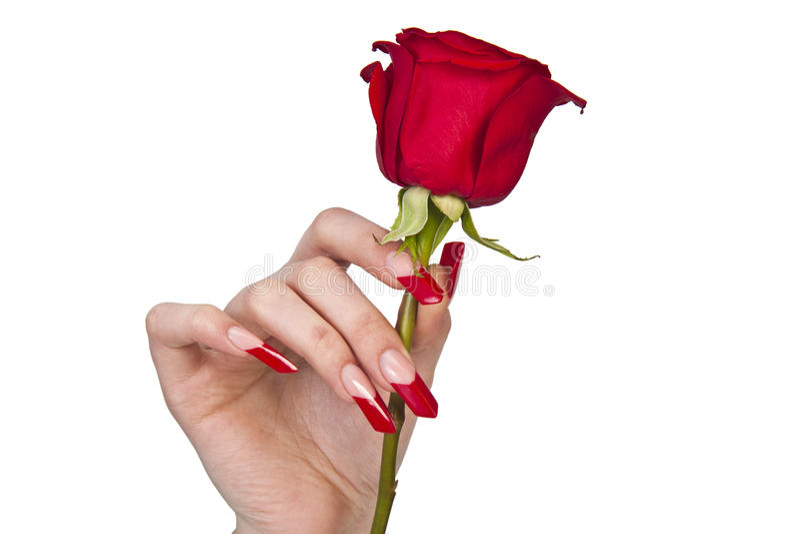 Human beautiful manicure stock image