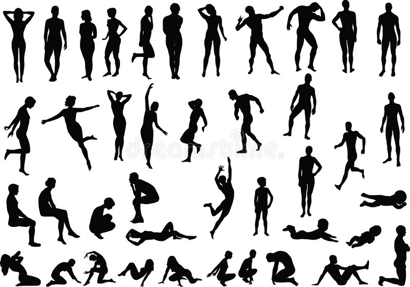 Download Human Body stock vector. Illustration of muscle, family - 8205058
