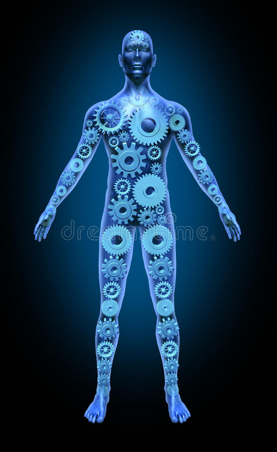 Human Body Function Health Symbol Medical Icon Gea Royalty Free Stock Image