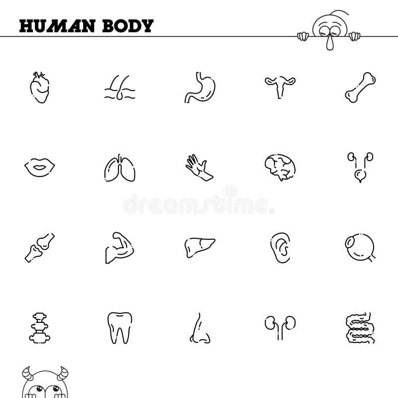 Human Body Icon Set Stock Vector Illustration Of Breast 83425814