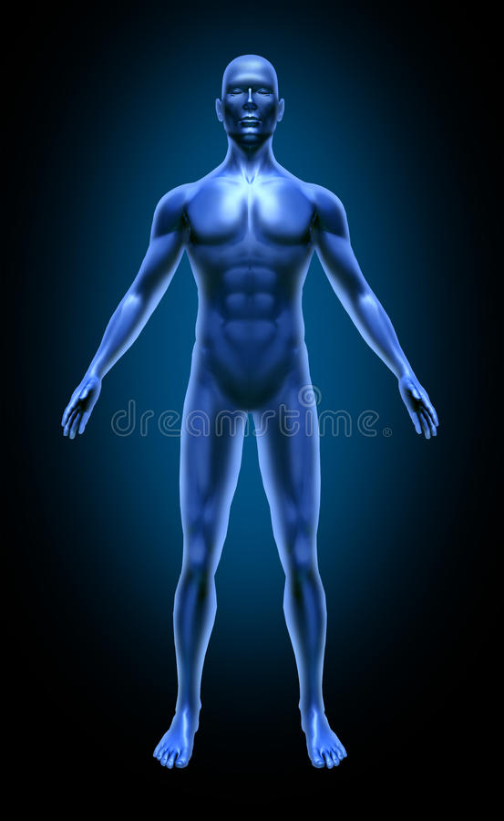 Free Human Body Joint Pain Inflamation Medical X-ray Stock Photo - 16584180