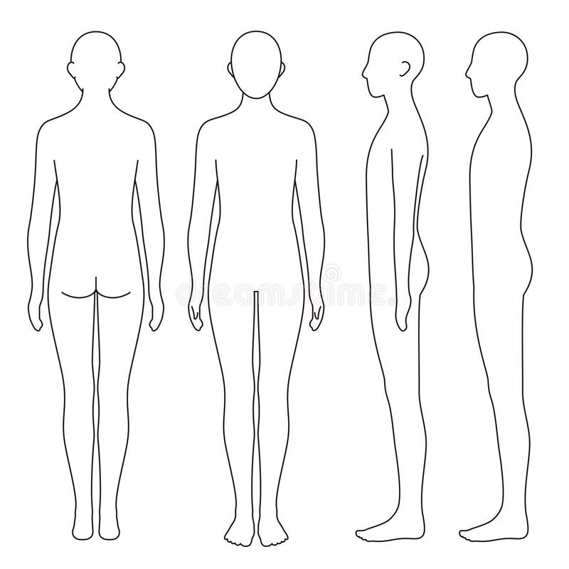 Free Human Body Outline, Front, Back And Side, Vector File Set Royalty Free Stock Photo - 192851805