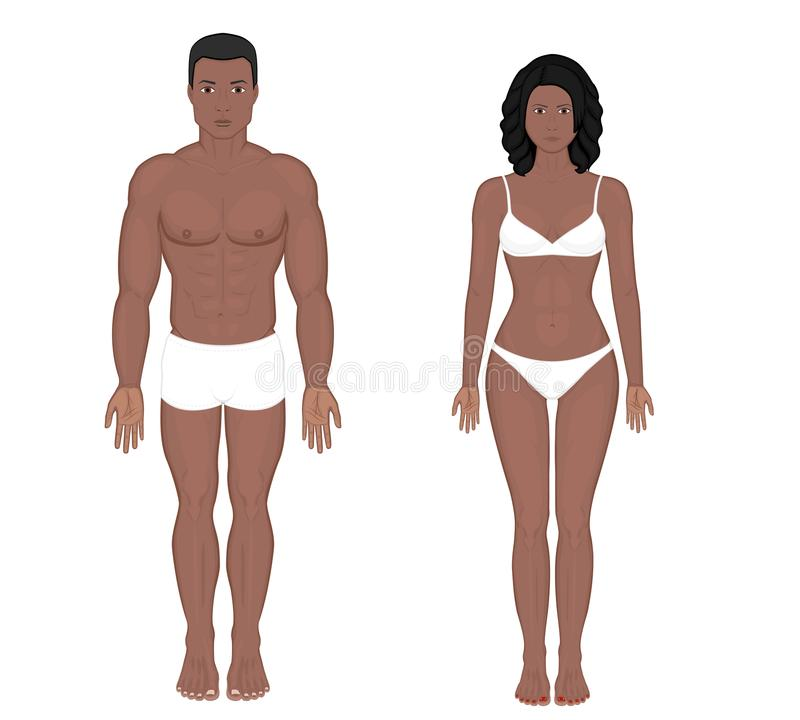 Human body problem_Indian and African and Asian man and woman. African American Indian man and woman naked body in full growth in underwear. Front view. Vector