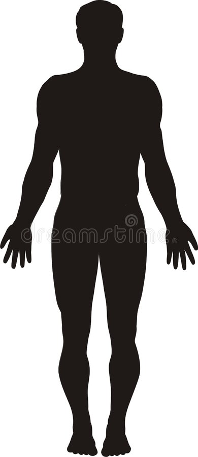 Human body silhouette royalty free stock images