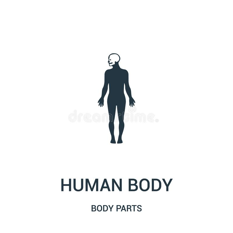 human body silhouette with focus on the head icon vector from body parts collection. Thin line human body silhouette with focus on royalty free illustration